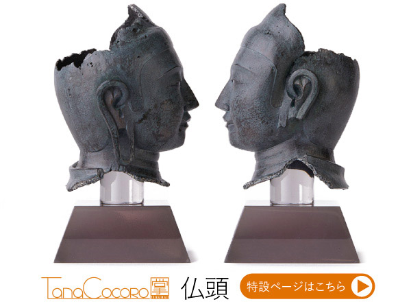 TanaCOCORO[掌] 仏頭